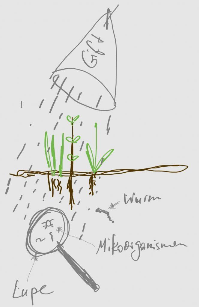 Schaubild PSM Bodenorganismen
